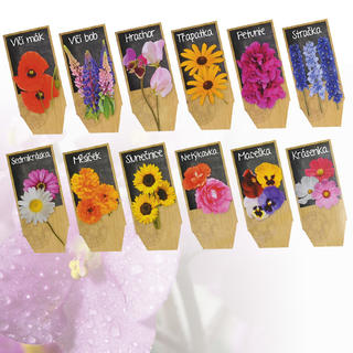 Nasiona kwiatów - 6 gatunków