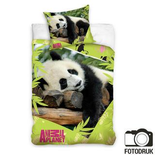 Pościel dziecięca Animal planet panda